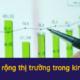 cách mở rộng thị trường trong kinh doanh (1)