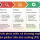 Quá trình phát triển và thương mại hóa sản phẩm trên thị trường
